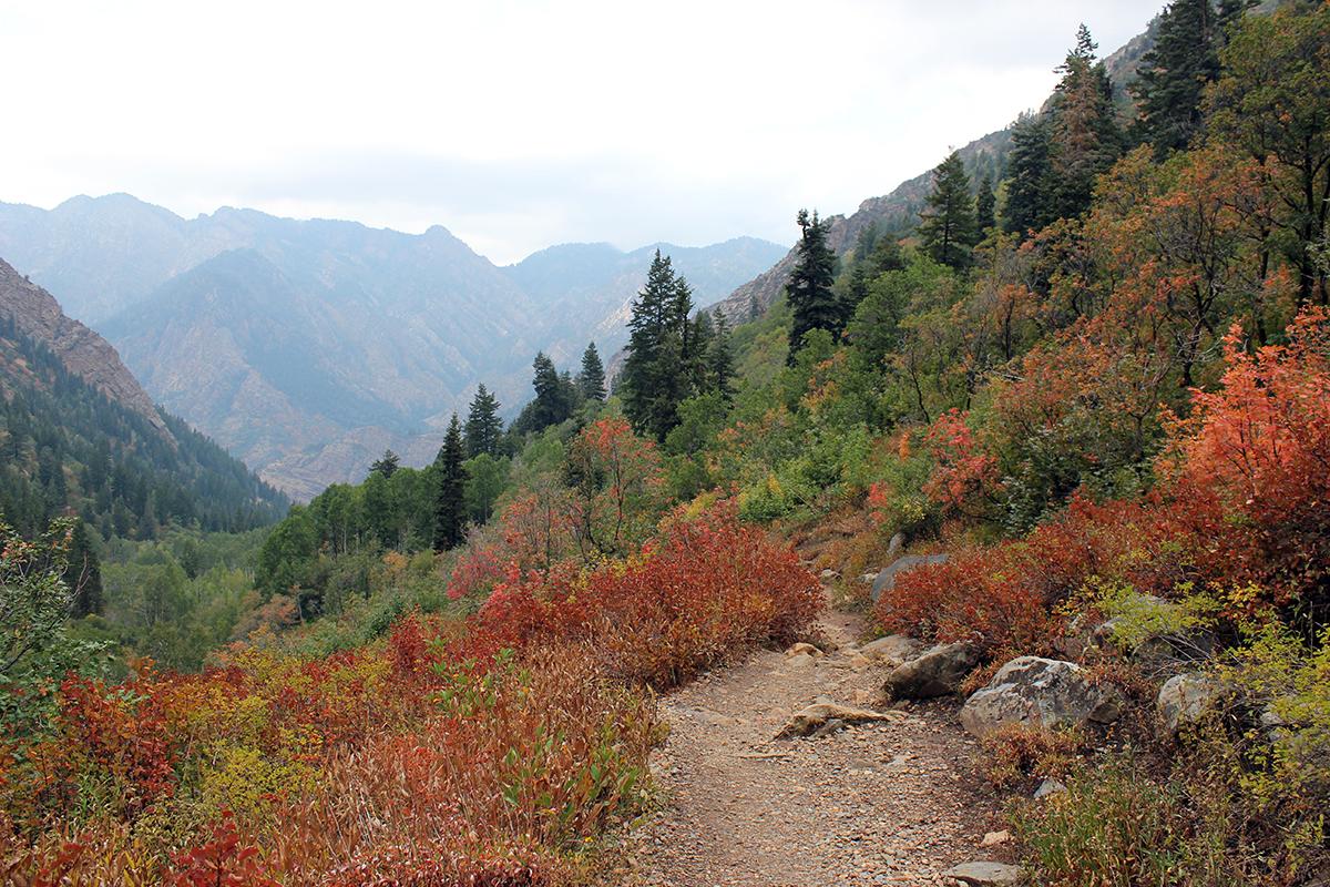 Lake Blanche Hiking Trail in Utah