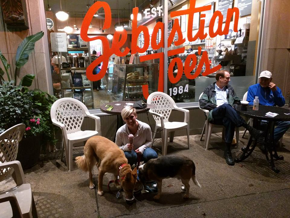 Sebastian Joe's Ice Cream in Minneapolis with Dogs on Patio