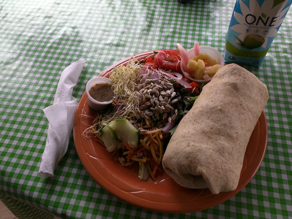 Curry Tofu Rice Wrap from Eklekticafe in Moab, Utah