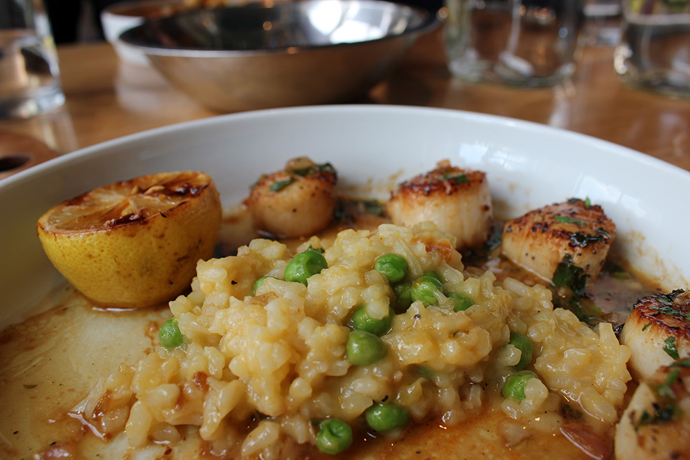 Scallop Butternut Risotto at Farmers Fishers Bakers Restaurant in Georgetown