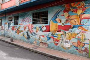 Tropical Birds Street Art - Bogotá Colombia Graffiti Tour
