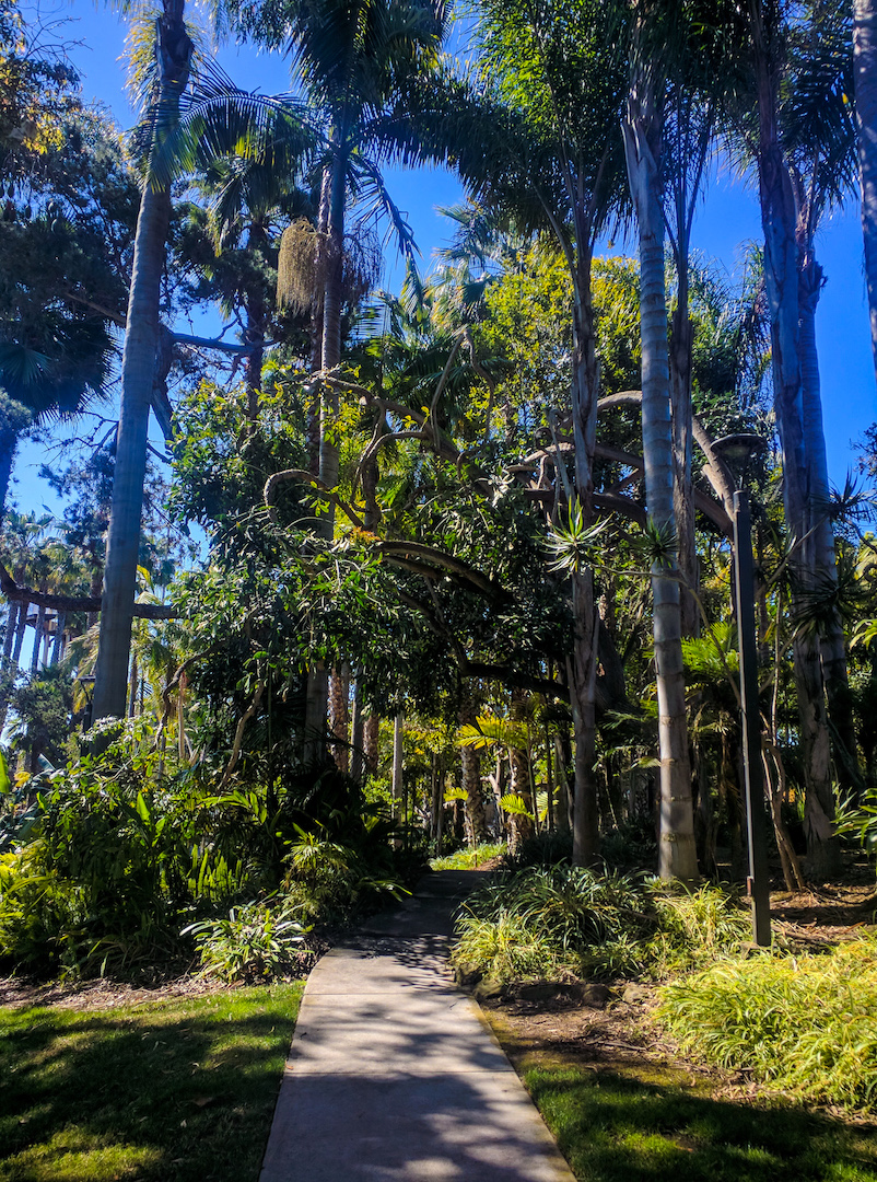 Walking Paths at Paradise Point Resort in San Diego, CA