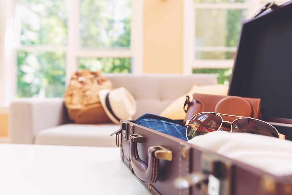Stylish Suitcase & Travel Luggage