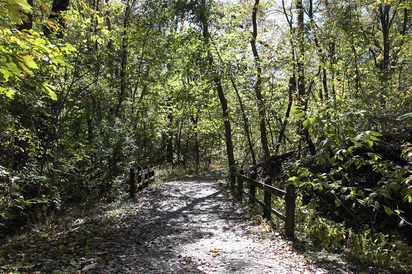 Hiking Trail at Weston Bend State Park, Missouri