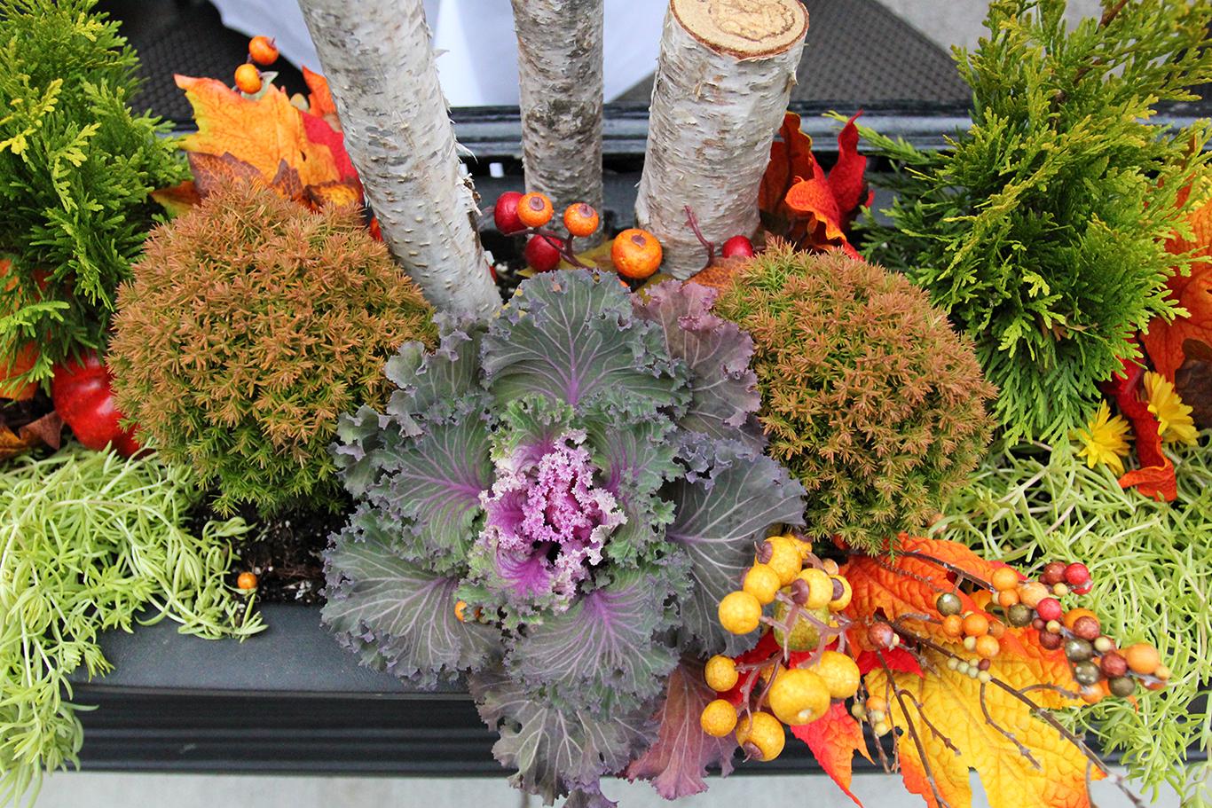 Decorative Fall Planter in Front of Atlantic Fish in Boston
