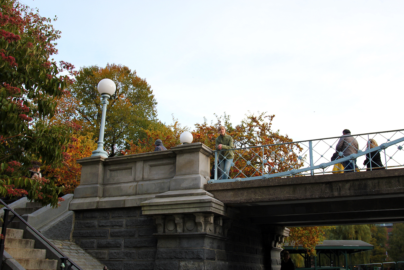 Fall Foliage Behind the Bridge at Boston Common