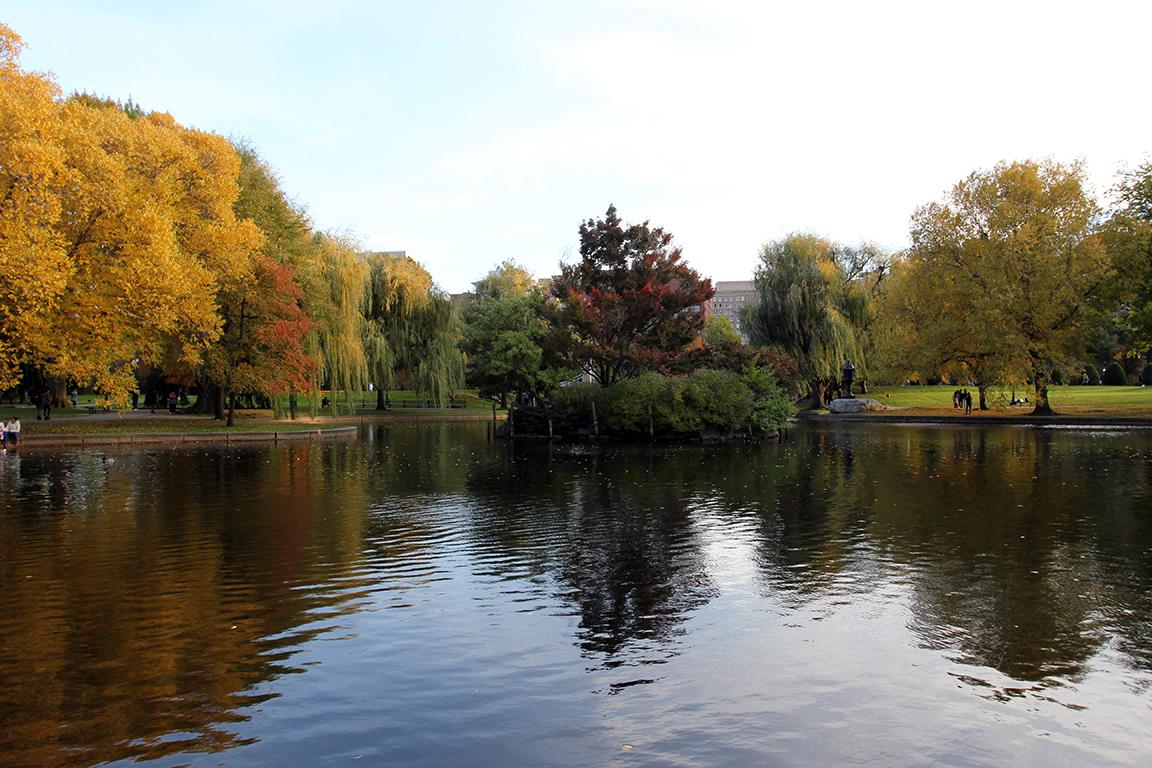 Fall Foliage on the Pond at Boston Common & Public Garden