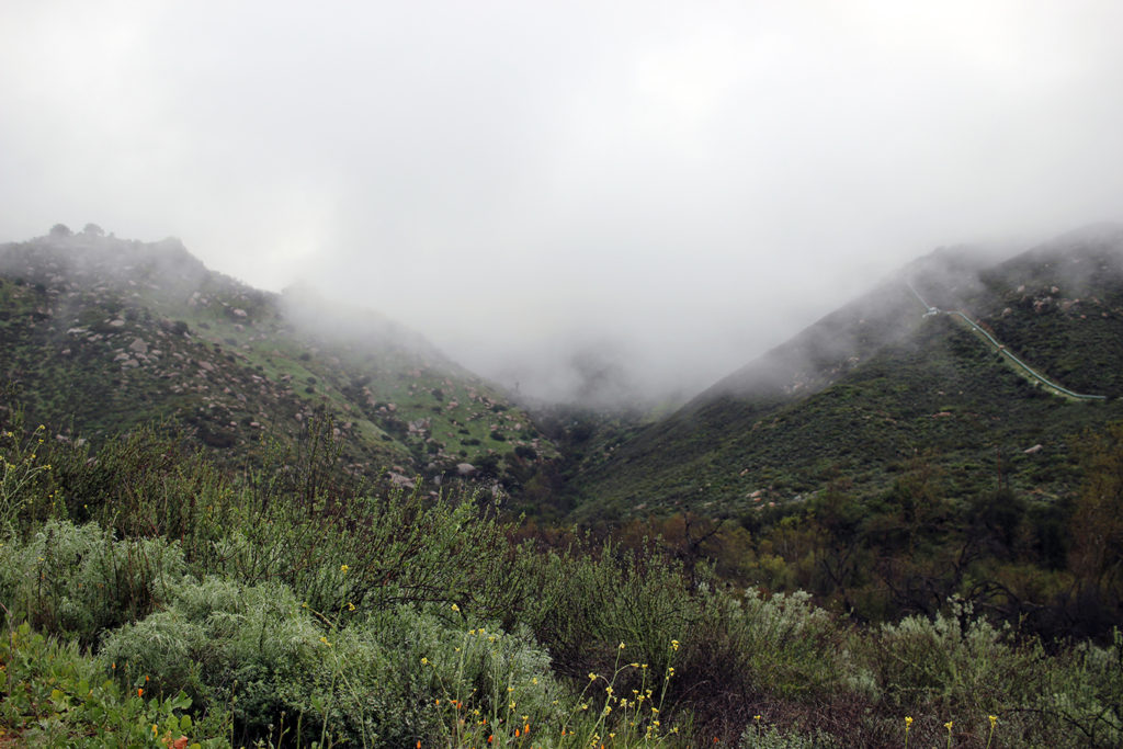 Unseasonably cool, wet mist on the Blue Sky Reserve hike to Ramona Dam in San Diego
