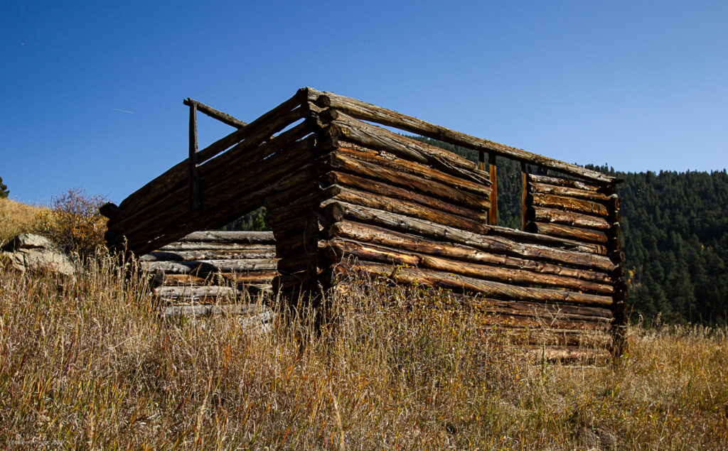 Swedish-American Tallman Horse Stable at Golden Gate Canyon State Park in Colorado