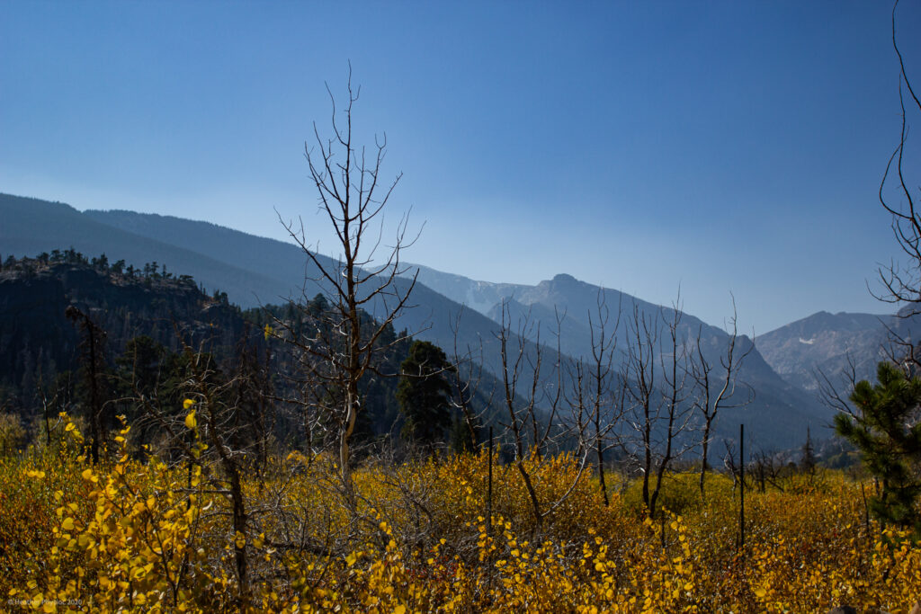 Fall Landscape at Rocky Mountain National Park in Colorado
