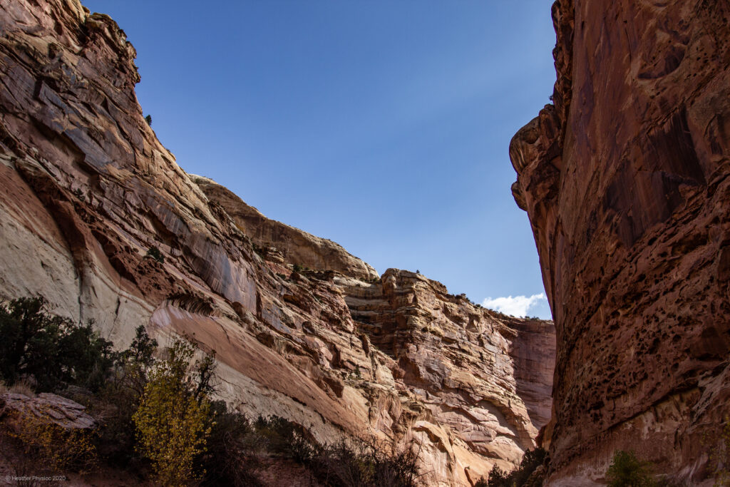 Curve of Canyon Wall at Capitol Reef National Park in Utah