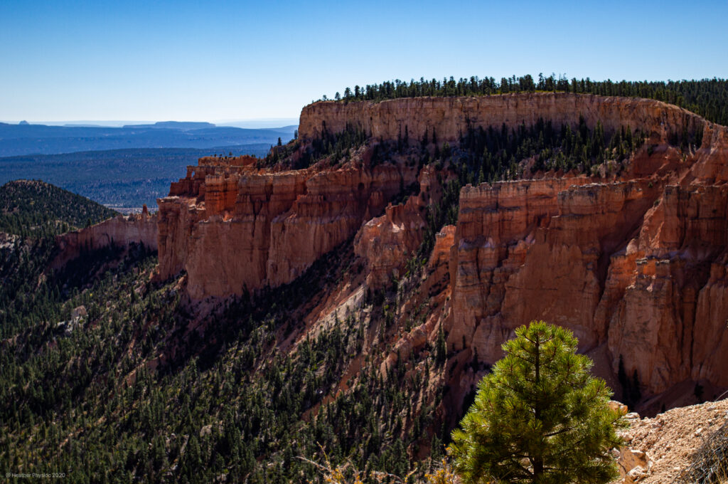 Curved Fins of Canyon Wall at Bryce Canyon National Park in Utah