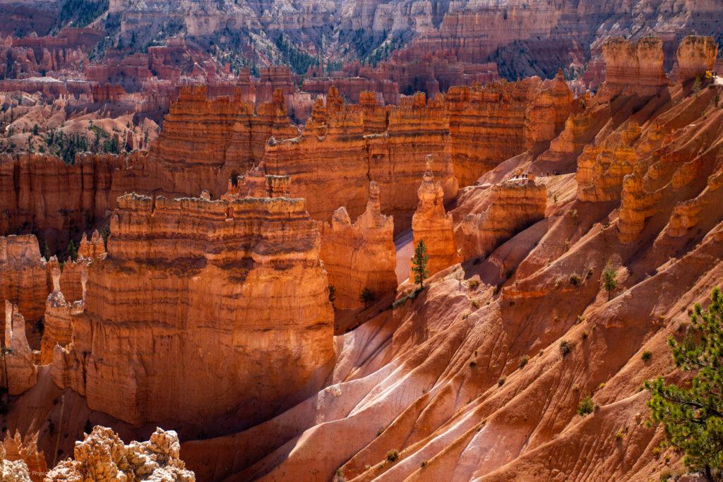 Sedimentary Canyon Fins & Hoodoos at Bryce Canyon National Park