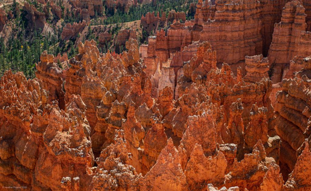 Eroding Canyon Walls Becoming Hoodoos at Bryce Canyon National Park