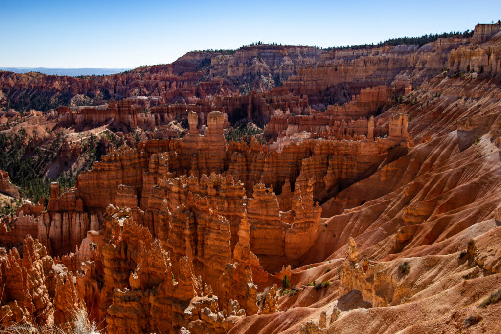 Erosion of Limestone & Clay at Bryce Canyon National Park