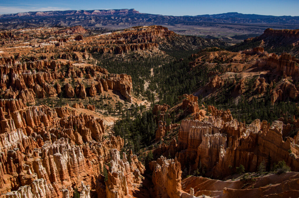 View from Piracy Point in Bryce Canyon National Park, Utah
