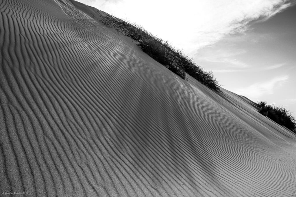 Black & White Photo of Long Shadow Across Wind Ridges in Sand Dunes at White Sands National Park in New Mexico