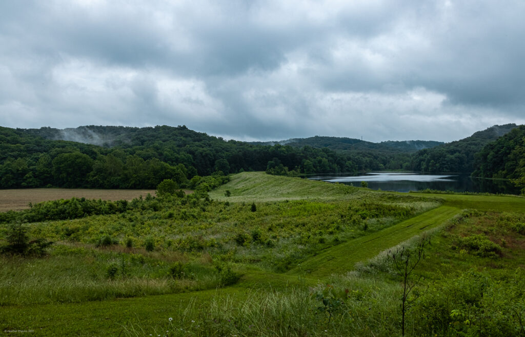 Foggy Green Hills & Lake at Knobstone Trailheads in Indiana